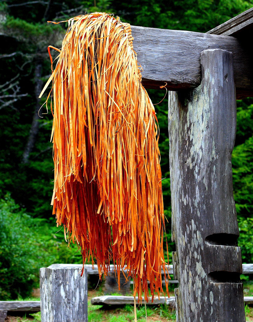grass skirt hanging on post